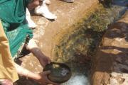 مخلوط آب و شیر و شربت به خروجی آب دریاچه افزوده می شود به امید اینکه همچنان پر آب و بالنده بماند