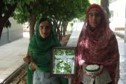 خوش آمدگویی با دوشیزگان زرتشتی شیراز