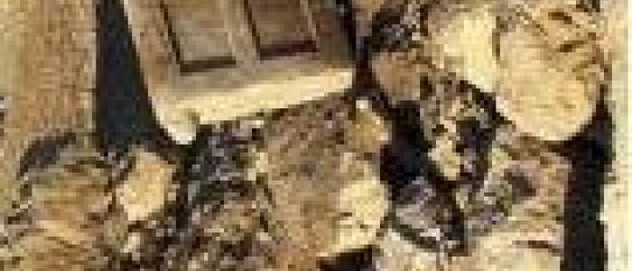 کشف یک در سنگی 500 کیلویی، متعلق به الیماییها در ایذه